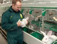 Bernhard Walker, állatorvos a svájci SQTS intézettől az állattartási körülményeket rendszeresen ellenőrző auditok egyikén