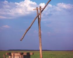 Magyarország gazdag mezőgazdasági hagyományokkal rendelkező országként ideális feltételeket kínál a nyúltenyésztéshez.